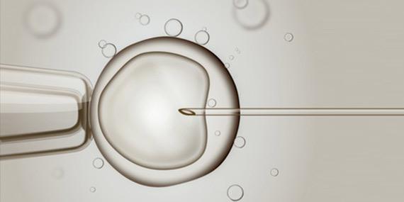 Na brněnské IVF klinice prý zaměnili embrya